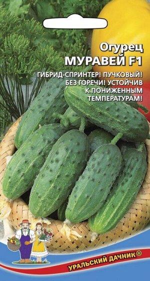 Огурец МУРАВЕЙ F1