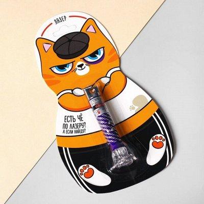 Пижон — для кошек — Световые приколы — Аксессуары