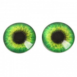 Глаза, набор 14 шт., d: 1,4 см, толщина: 0,5 см