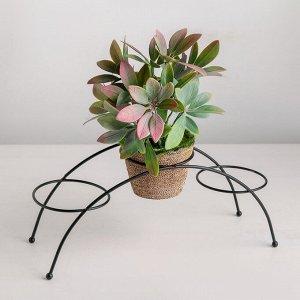 Подставка для цветов Доляна «Ринго». d=8.2 см. 30?9.5?12 см. цвет чёрный