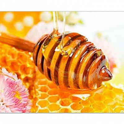 В.18. Лазовский мёд! Позаботься о своем иммунитете
