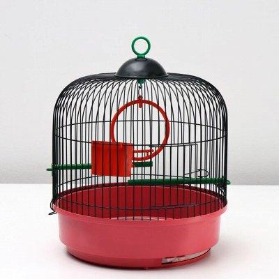 Зоотовары. Все для любимых питомцев — Зоотовары. Товары для птиц. Клетки и переноски — Для животных