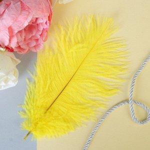 Перо для декора, размер: 24 см, цвет жёлтый