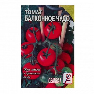 "Семена Томат ""Балконное Чудо"", 0,1 г"