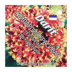 """Семена цветов Гайлардия красивая """"Лоллипап"""" двухцветная, Мн, DARIT 0,1 г"""