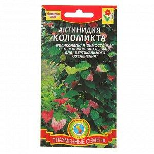 Семена комнатных цветов Актинидия коломикта, Мн, 10 шт