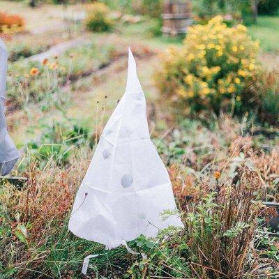 Распродажа семян, удобрений и садового инвентаря — Защита растений
