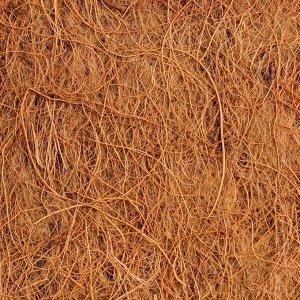 Круг приствольный, d = 0,3 м, из кокосового полотна, набор 5 шт., «Мульчаграм»
