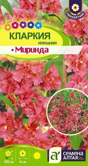 Цветы Кларкия Миринда изящная/Сем Алт/цп 0,3 гр.