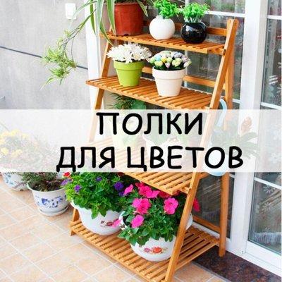 Хозтовары из Алтая — Полки для цветов — Интерьер и декор