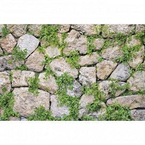 Фотобаннер, 250 ? 150 см, с фотопечатью, люверсы шаг 1 м, «Каменная стена»