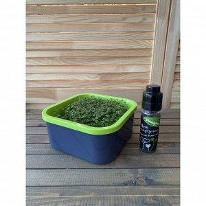 Семена дайкона «Моя микрозелень», бутылка с дозатором, 75 г, «Здоровья клад»