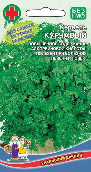 Кервель Курчавый (УД) Р (однолетний,теневыносливый,используют в кулинарии)