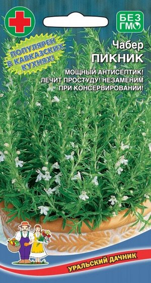Чабер Пикник (УД) (однолетник,до 40 см,перечная трава,просто добавь в фарш)
