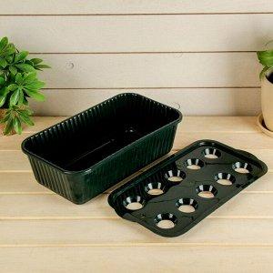 Лоток для выращивания зелёного лука, 29 ? 16 ? 8,5 см, тёмно-зелёный