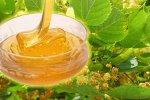 Мёд натуральный цветочный Липовый, (500г), 2021