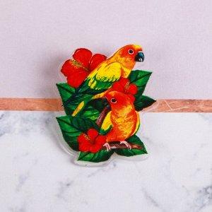 Значок «Попугаи», 8 х 12 см