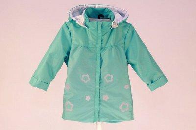 Барракуда - верхняя детская одежда. — Ветровки — Одежда
