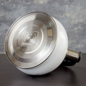 Чайник со свистком 3 л Magic birds,с индикатором нагрева, индукция