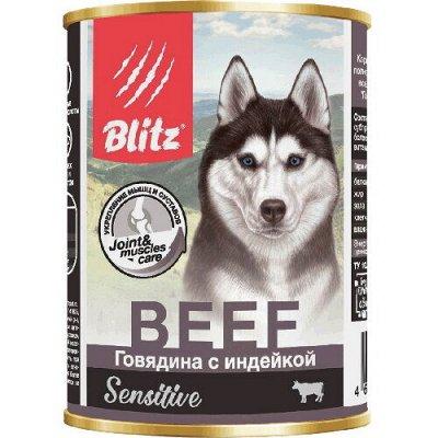 Все необходимое для любимых питомцев - очень много новинок! — Корма Bozita, Orijen, Blitz для собак — Корма