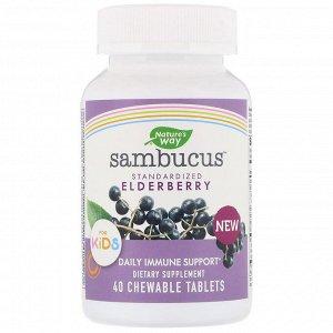 Nature&#x27 - s Way, Sambucus for Kids, Standardized Elderberry, 40 Chewable Tablets