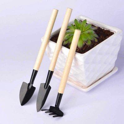 Такие полезные мелочи, сувениры-21 Много новинок — Сад, огород