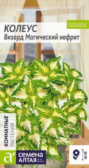 Цветы Колеус Визард Магический Нефрит/Сем Алт/цп 10 шт.