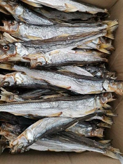🐟 Вкуснейшая рыбка, икра! Омега-3, бады!  — Корюшка Камчатка — Вяленые и сушеные