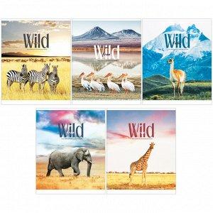 "Тетрадь 80л., А5, клетка ArtSpace ""Животные. Wild and cute"", ВД-лак"