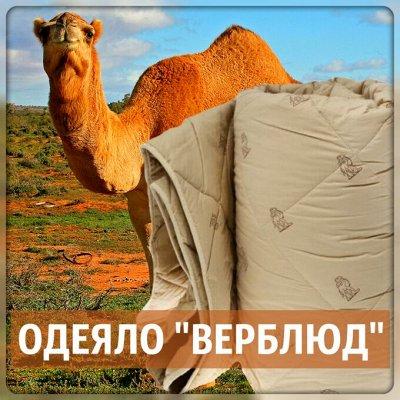 """Эко-подушки для хорошего сна ♡ уДачный сезон!  — Одеяла """"Верблюд"""" — Одеяла"""