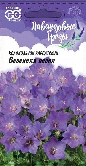 Колокольчик Весенняя песня, карпатский*  0,1 г, серия Лавандовые грезы Н20