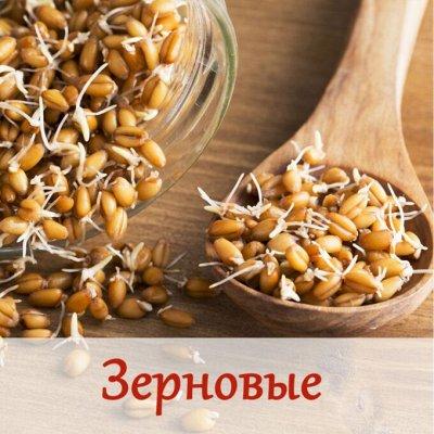 Малавит - косметика из Алтая! — Зерновые! — БАД