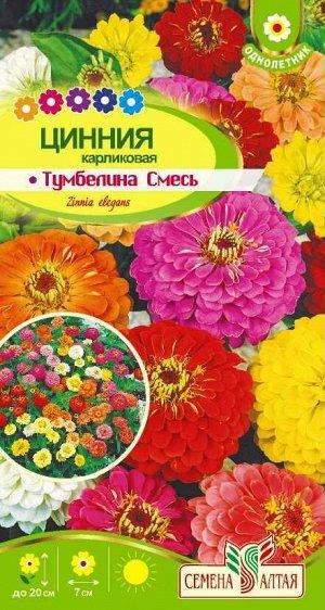 Цветы Цинния Тумбеллина смесь Карликовая/Сем Алт/цп 0,2 гр.
