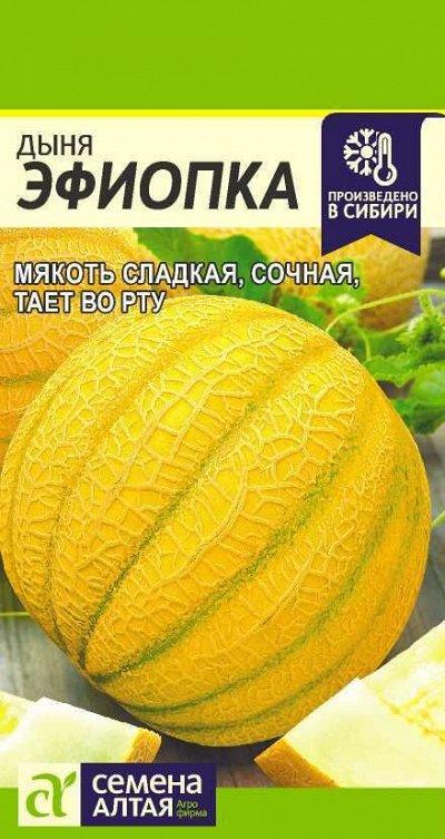 Алтайские семена — Дыня — Семена овощей