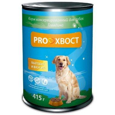 ЗооДом, PROхвост, Probalance, OSSO — Влажный корм для собак — Корма
