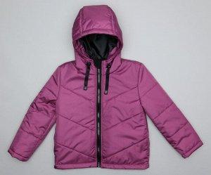 2506 Куртка для девочки демисезонная