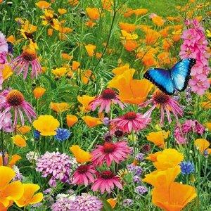 """Газон цветущий """"Рай для бабочек"""" 30г"""