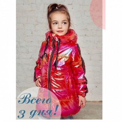 Детская верхняя одежда Аврора. Зима 2020 + Распродажа осени — Девочки. Весна 2020. Распродажа!!! — Верхняя одежда