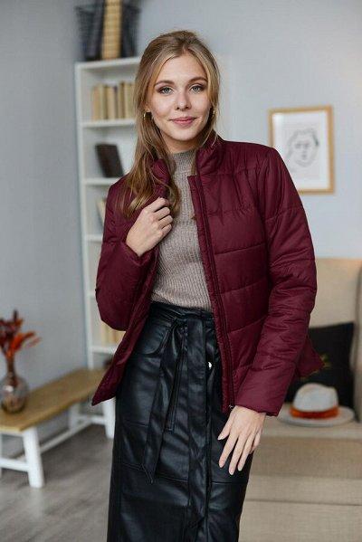 TwinTip - Эффектные курточки, пальто и плащи для милых дамОК — Курточки — Демисезонные куртки