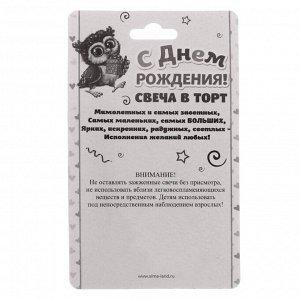 """Свеча в торт цифра 6 """"Сова"""""""