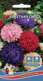 Цветы Астра Букетная Смесь (Марс) (высокая холодостойкость, 6-8 см диаметр)