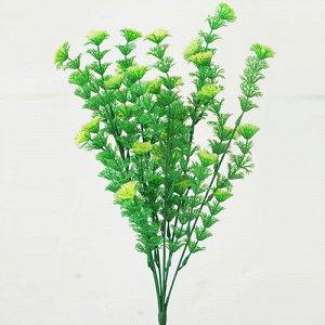 Зелень с круглыми листьями.Искусственные растения