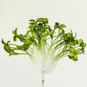 Рассада с овальным листом (10 шт. в пучке).Искусственные растения