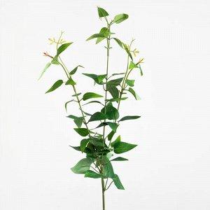 Рускус. Искусственные растения