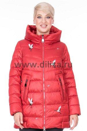 Куртка Mishele 20037_Р (Красный FQ9)