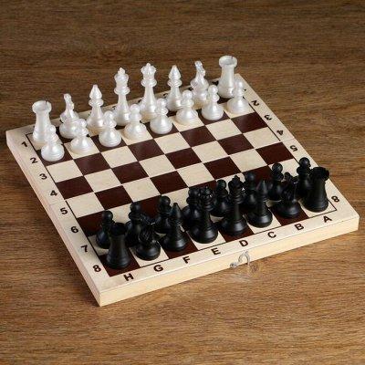 Спорт и туризм🚴♂️ Держим форму! ️ — Шахматы — Спорт и отдых