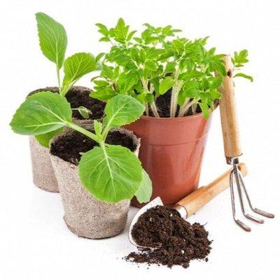 ✔Для садоводов и огородников.🌱Всё нужное для дачи — Для рассады, посадок — Парники и теплицы