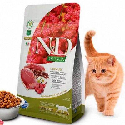 Любимый корм для собак и кошек Farmina!   — Корма для кошек Farmina, Италия — Корма