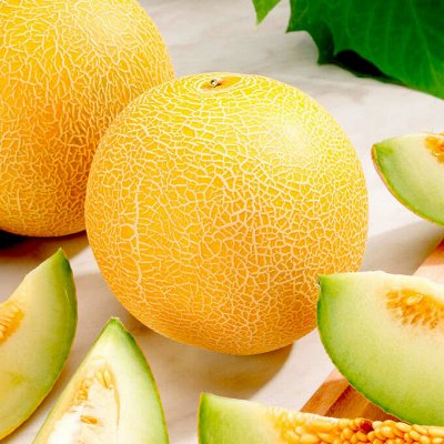 Огромная распродажа семян! +Предзаказ крутого чеснока и лука — Дыня (семена) — Семена фруктов