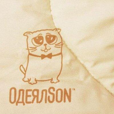 """Мягкий сон - легендарные одеяла и подушки!  — """"Кот и Сова"""": ЭКСКЛЮЗИВ, ограниченная серия! — Полутороспальные"""